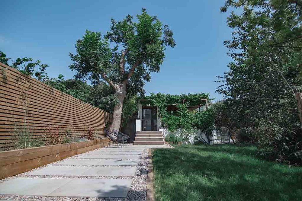 TREE SURGERY -