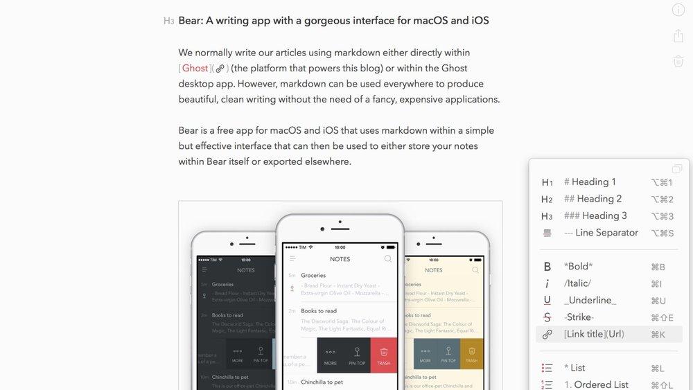 bear-markdown.jpg