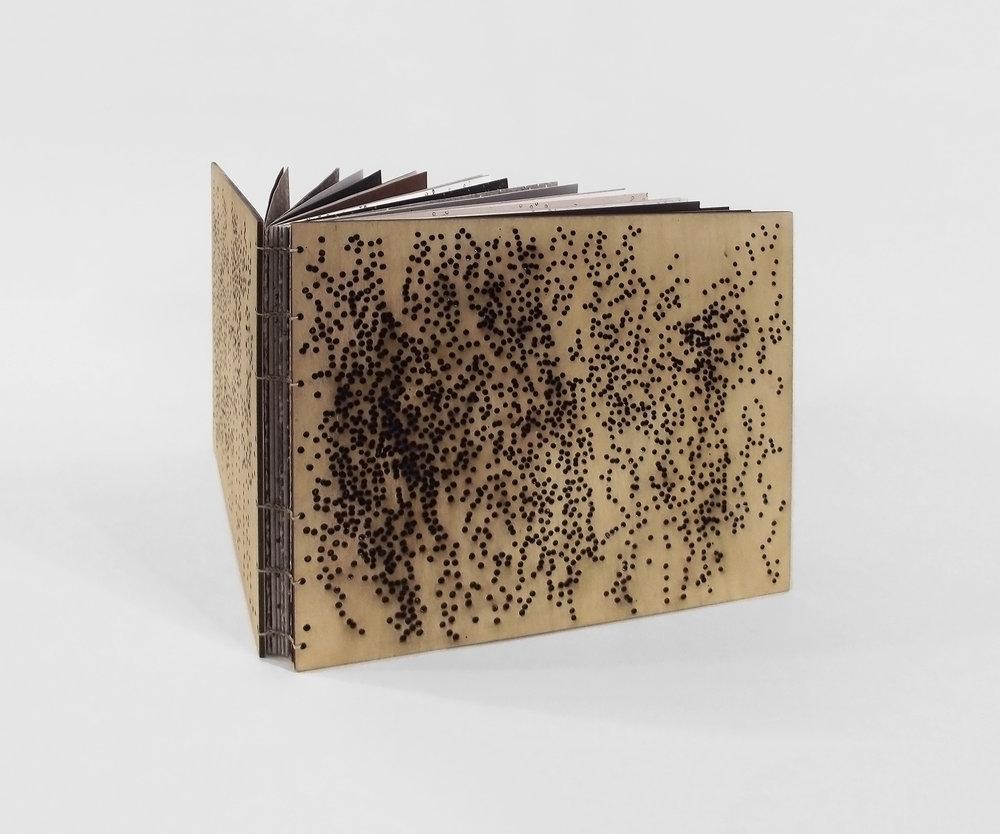 JordanAnnCraig_artistbook_freckled.jpg