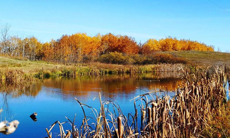 applewood-photo02-large-acreage-land.jpg