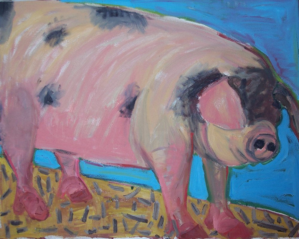 Pig with Black Face (28 X 24)