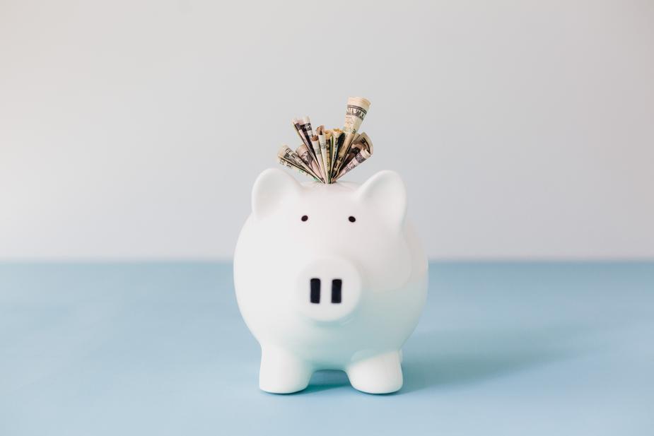 stuffed-piggy-bank-savings_925x.jpg