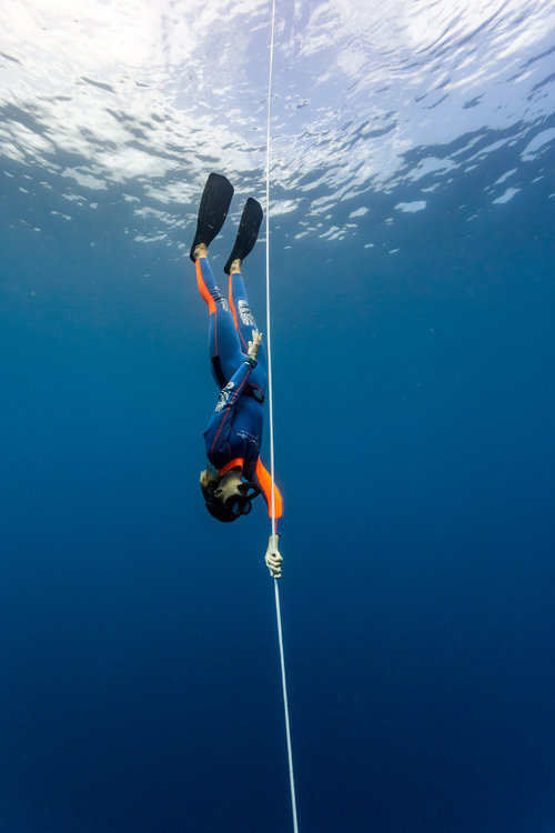 Freediving Blue Corner Dive