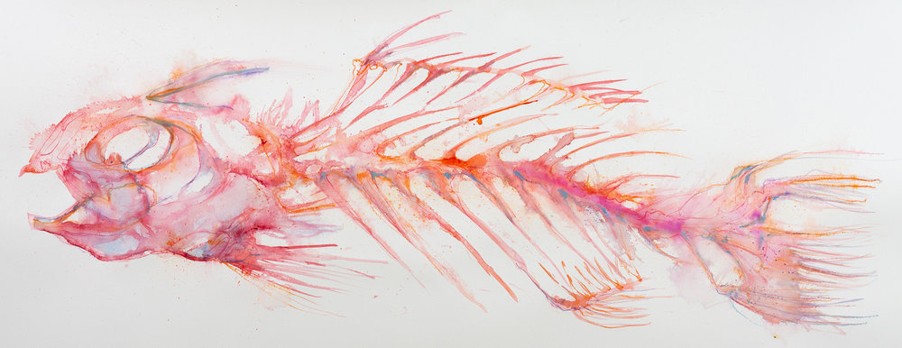 Red Skeleton - approx 1.25m wide x 80cm deep. NZ$750 unframed