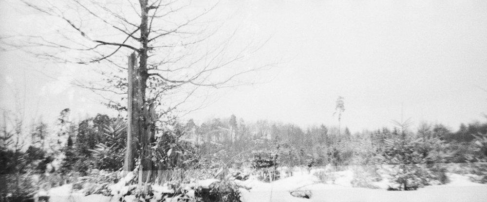 Winter – A Holga story - Experimental Photography