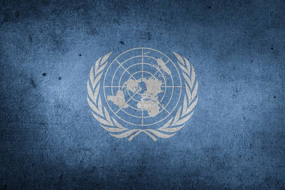 The United Nations -