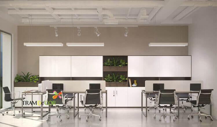 Thiết kế trang trí văn phòng