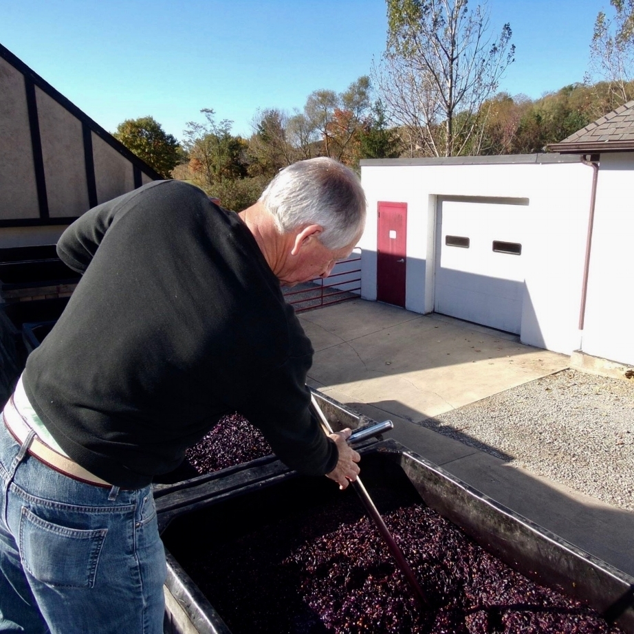 Randy stirring grapes