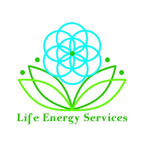 Tennant Biomodulator — Life Energy Services