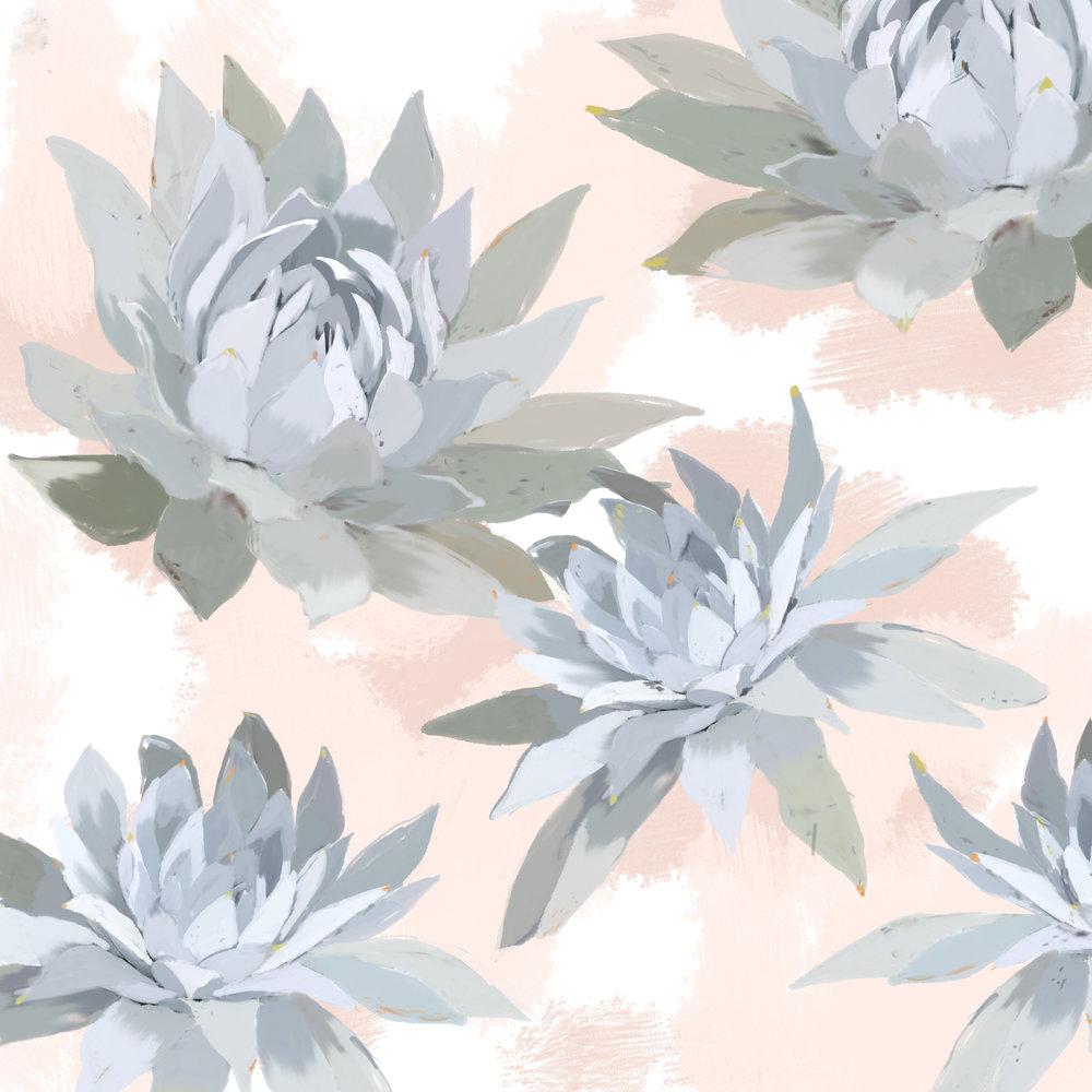 succulent24.jpg