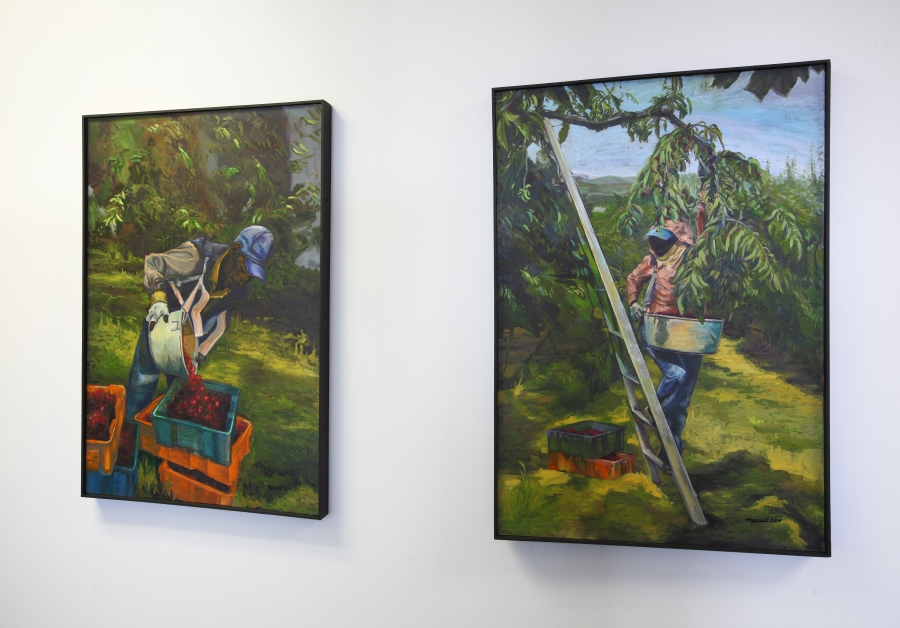 "Installation view of paintings by Narsisco C. Martinez. Cherry Picker I and Cherry Picker II. 24""W x 36""H. Oil on Canvas. (2015)"