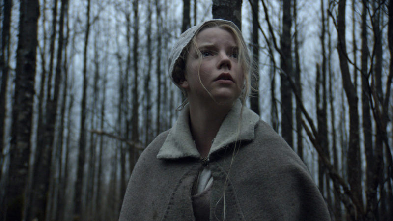 The Witch - 2016, Robert EggersIn 1630 New England, panic and despair envelops a farmer, his wife and their children when youngest son Samuel suddenly vanishes. The family blames Thomasin, the oldest daughter who was watching the boy at the time of his disappearance. With suspicion and paranoia mounting, twin siblings Mercy and Jonas suspect Thomasin of witchcraft, testing the clan's faith, loyalty and love to one another.