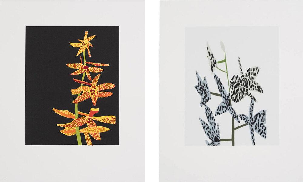 Jonas Wood - Untitled (Orchid 1 & 2)