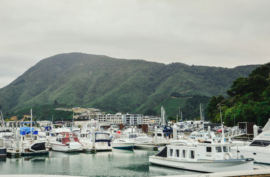 新西兰-南岛。最美丽的国家之旅。