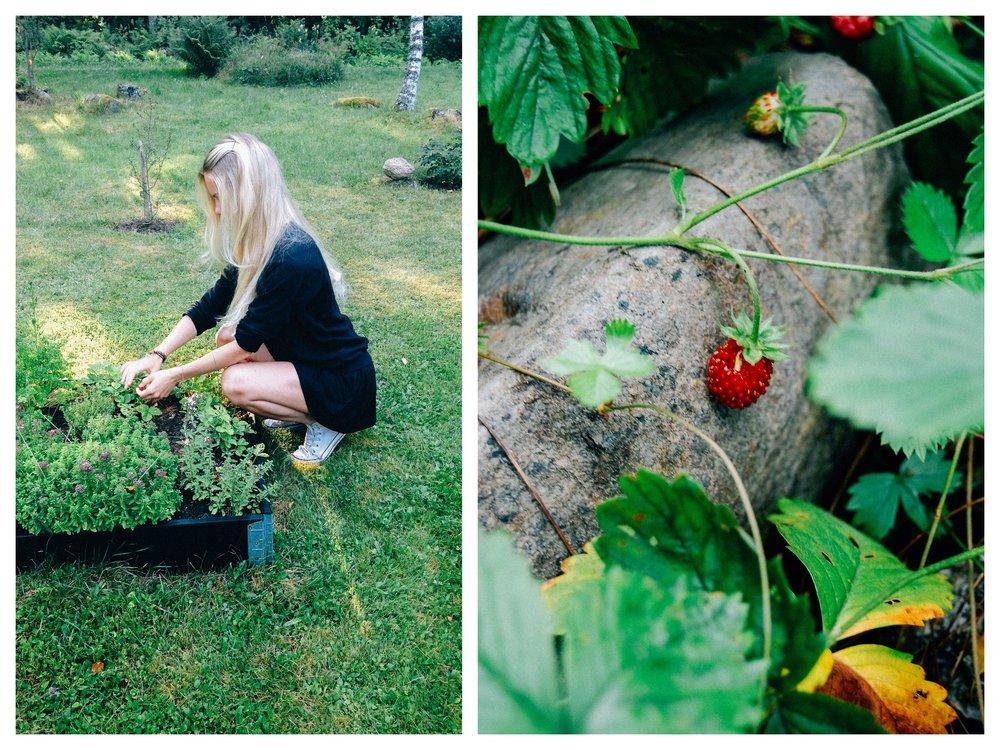Countryside Living | 北欧厨房