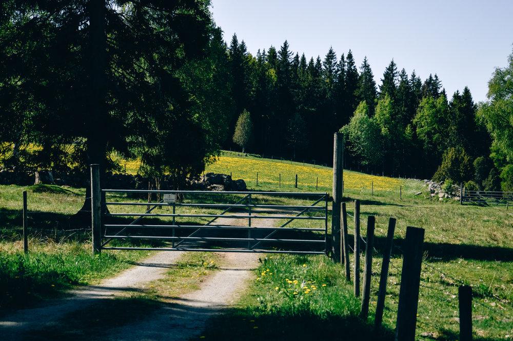 TheNordicKitchen_countryside_-012.jpg