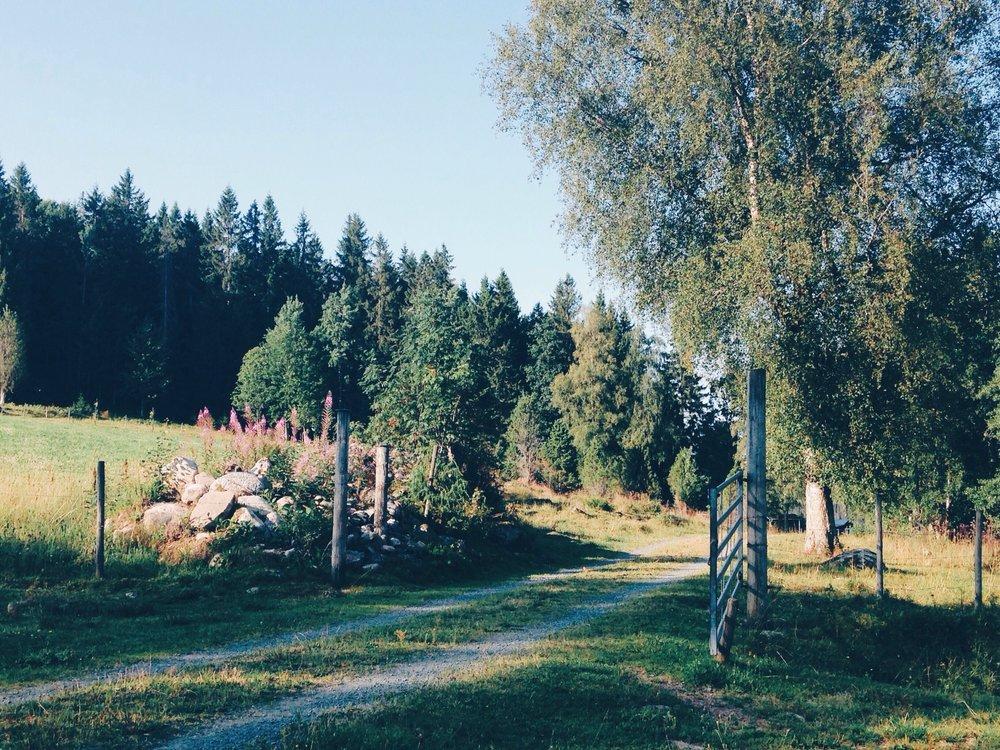 The_Swedish_Countryside_-005.jpg