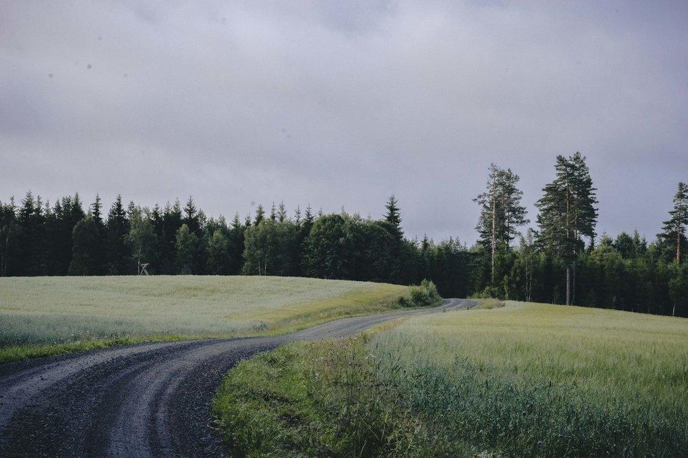 The_Swedish_Countryside_-010.jpg