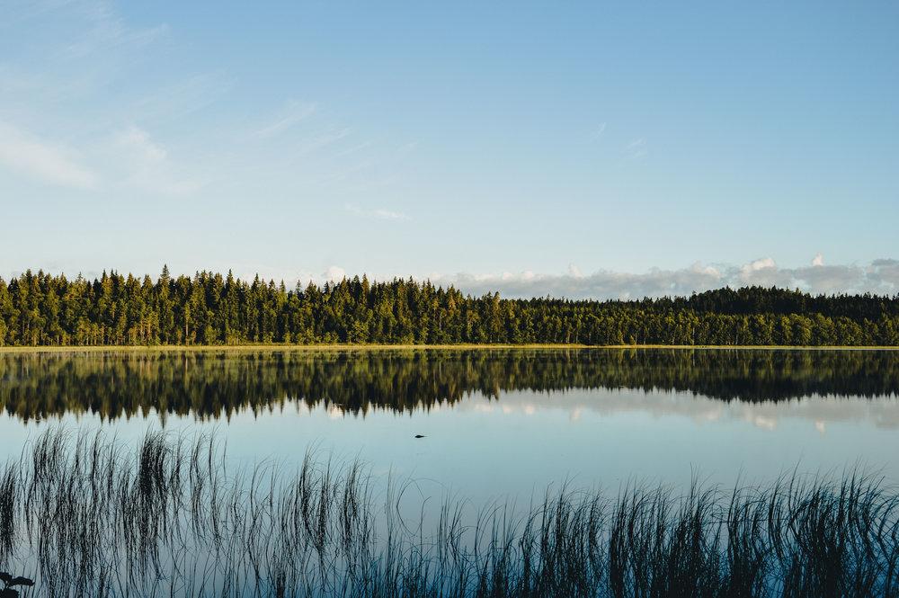 The_Swedish_Countryside_-012.jpg