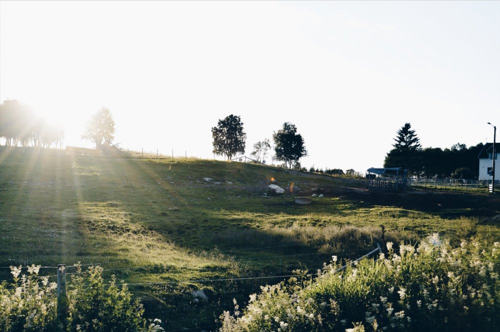 Lapland_Lofoten_TNK_-004-1000x665.jpg