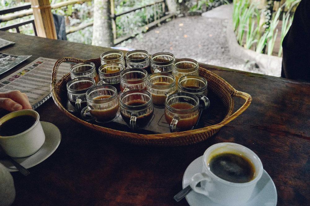 印度尼西亚巴厘岛|北欧厨房