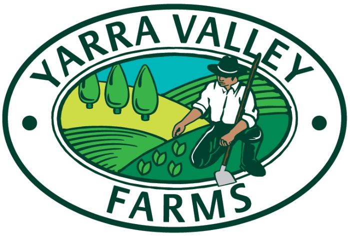 YVF logo_27-1-10.jpg