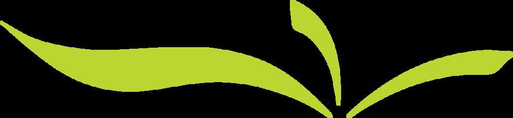 in2food-logo-leaves.png