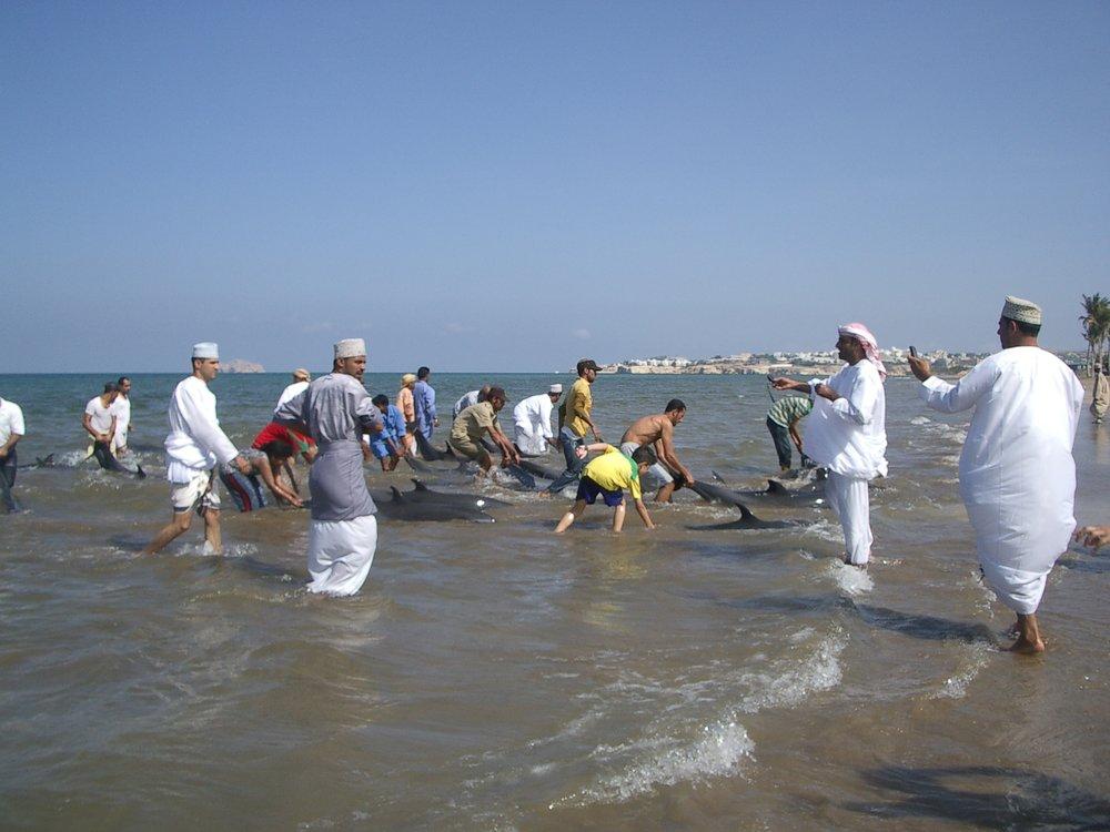 Muscat Jan07 120.jpg
