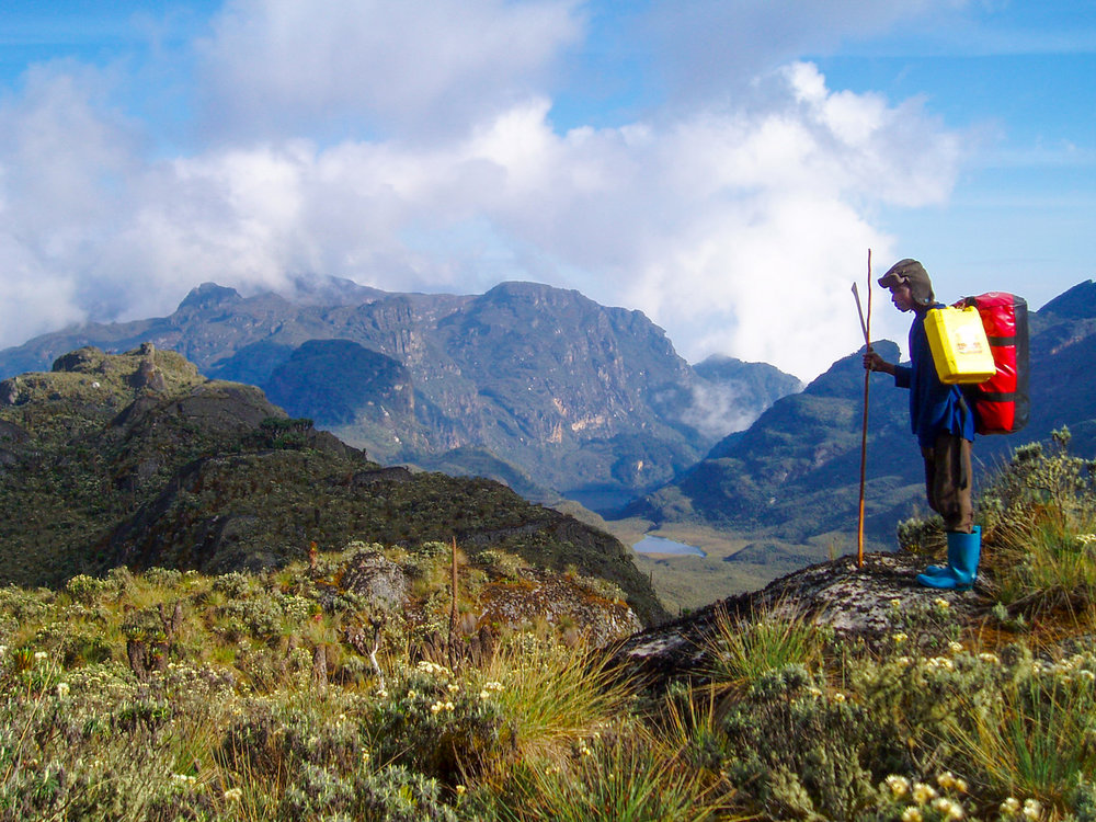 Hiking in the Rwenzori Mountains - Pleasant walks in the foothills of the Rwenzories. It's a good days walk over the Kazingo trail to Bundibugyo.Seven days hike up to the snow capped peaks at 5109m.
