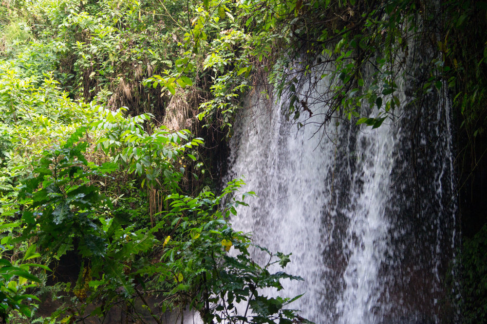 Amabere Caves & Waterfall - Situated 8 kilometers West of Fort Portal town in a lovely hilly area dotted with crater lakes. An adventurous descent into the half open caves, with a lot of history tales attached to it.