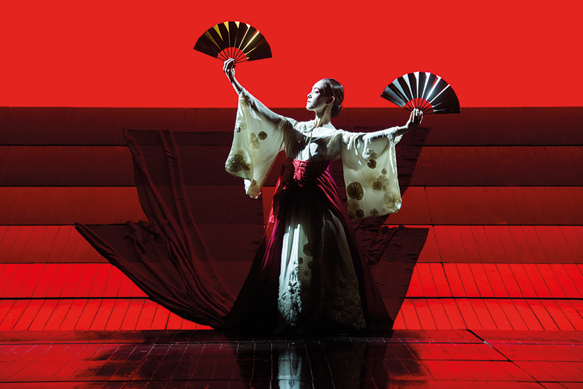 madame-butterfly.png