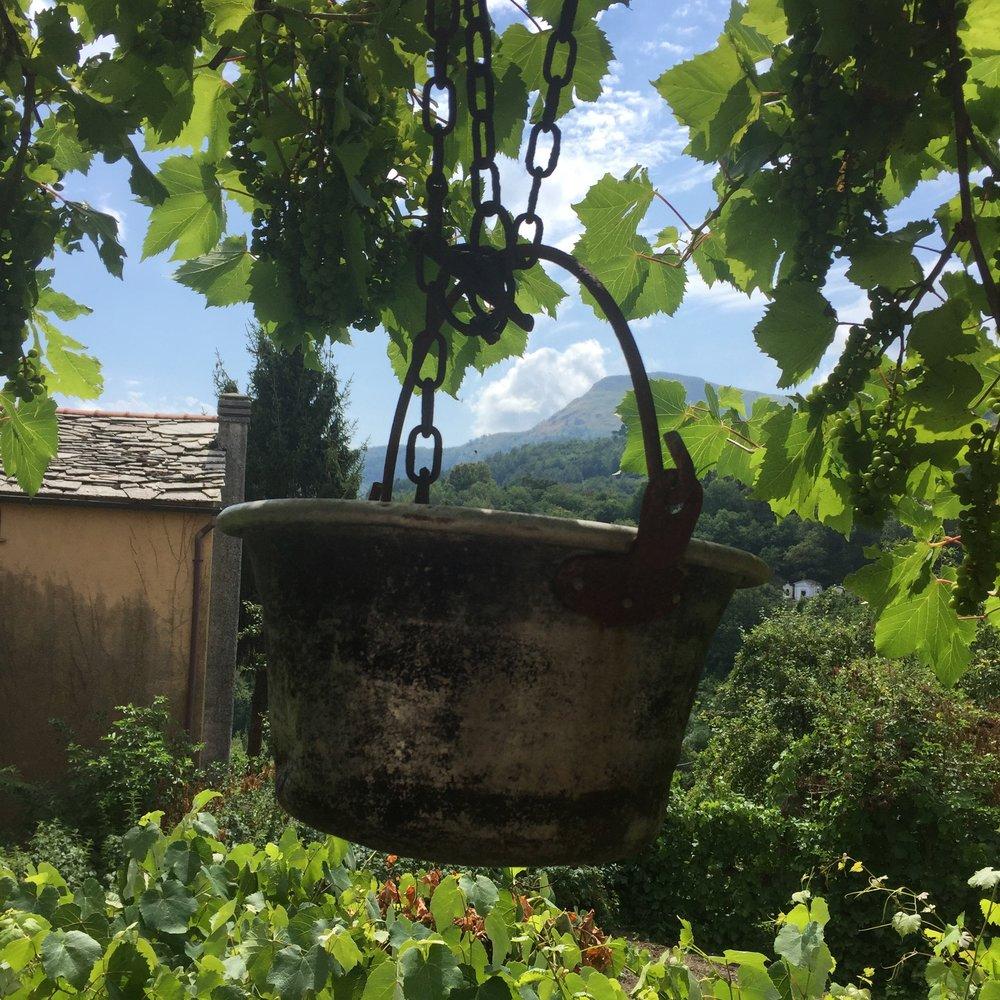 old vessel at Trattoria Pagliettini