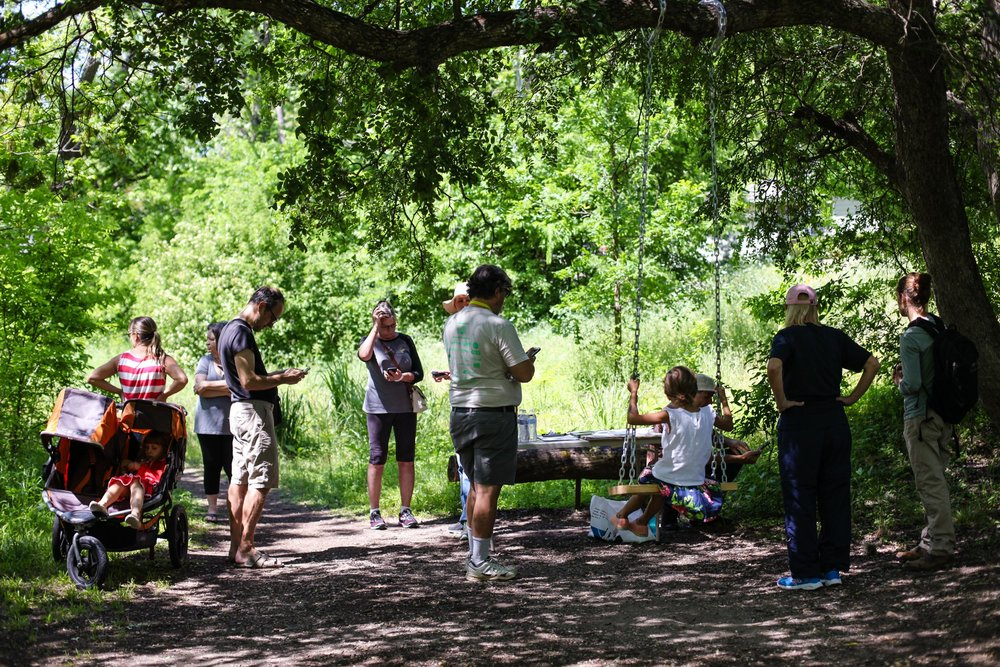Willowbrook Bioblitz 2018-2.edw.jpg