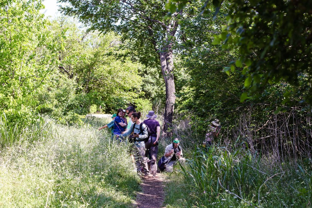 Willowbrook Bioblitz 2018-54.edw.jpg