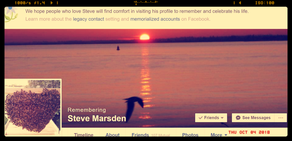 Steve Marsden.png