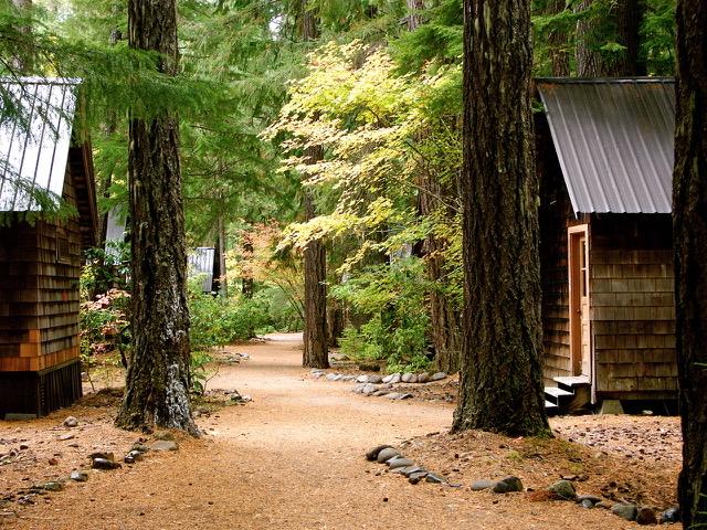 Cabin Trail.jpeg