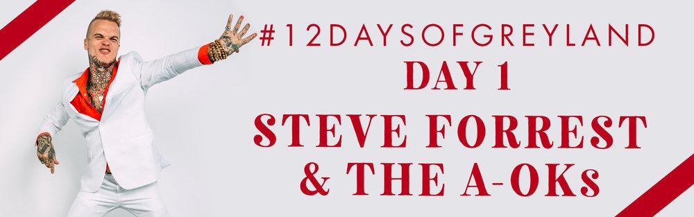 12DAYS_steve_banner.jpg