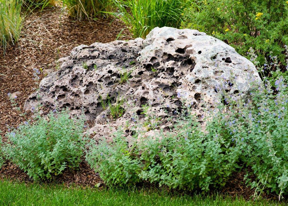 Aspen Garden Design