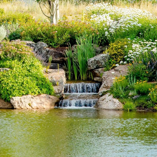 Aspen Residential Waterscape