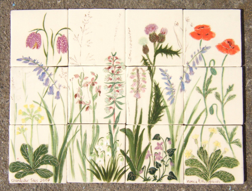 Wild flower mural - A small mural showing some meadow wildflowers.