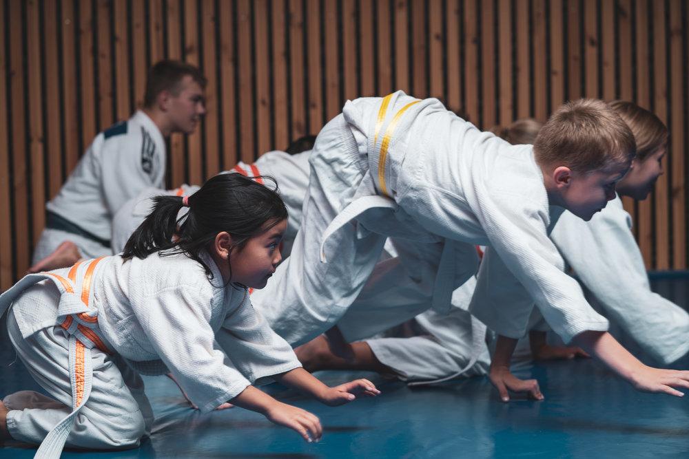 Ildsjeler - Vi er en klubb som er basert på ildsjeler. Ingen i styret får lønn, ingen trenere, ingen ledere. Vi gjør det vi gjør fordi vi brenner for judo og ønsker å dele vår lidenskap med flere.Medlemskontingentene går i sin helhet til formål for klubben og våre medlemmer i form av kostnader til drift, sosiale arrangementer og konkurranser.