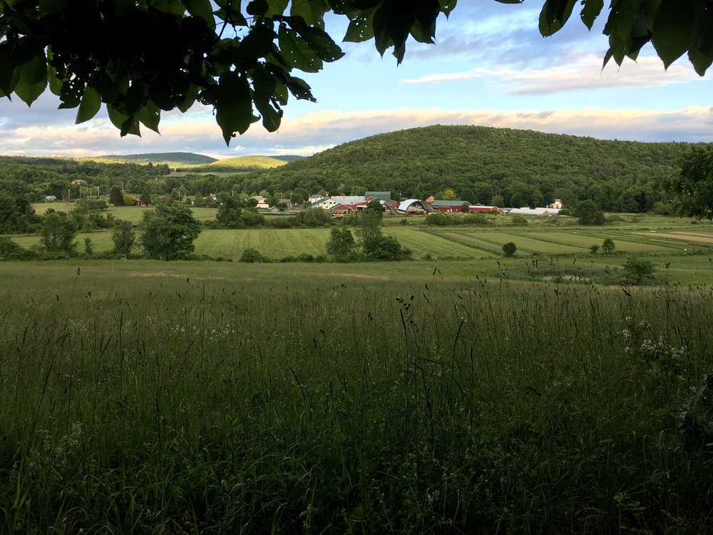 West Hill View.JPG