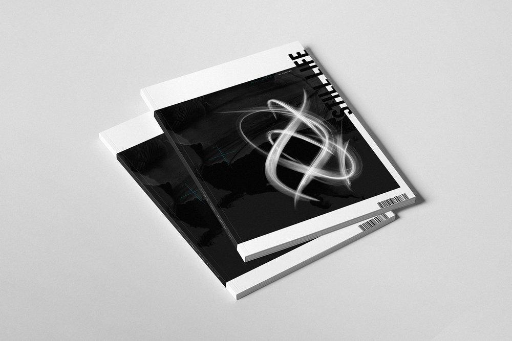 PIERALEXY_PRLXY_Brochure_2.jpg