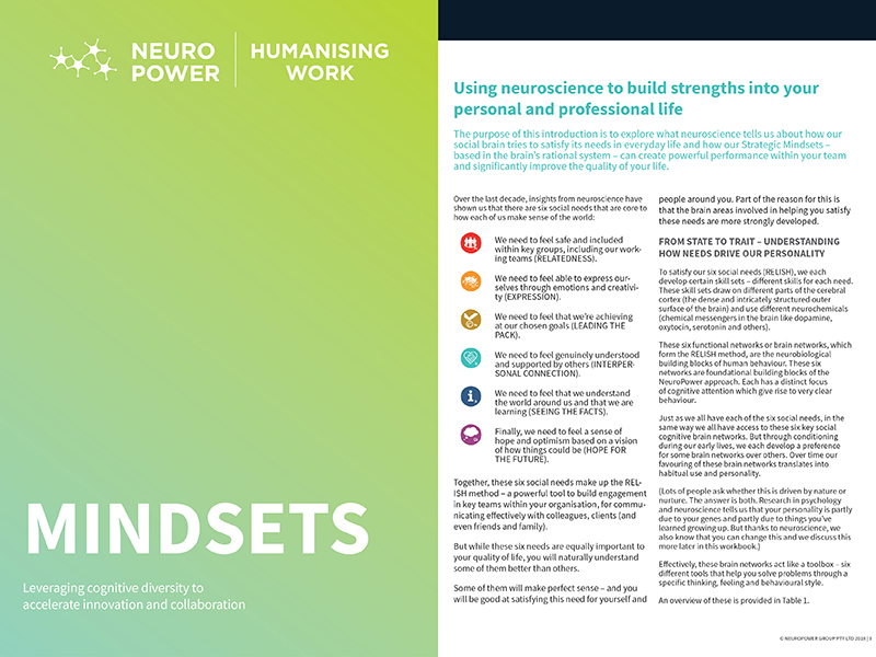 NPG_workbooks- Mindsets .jpg