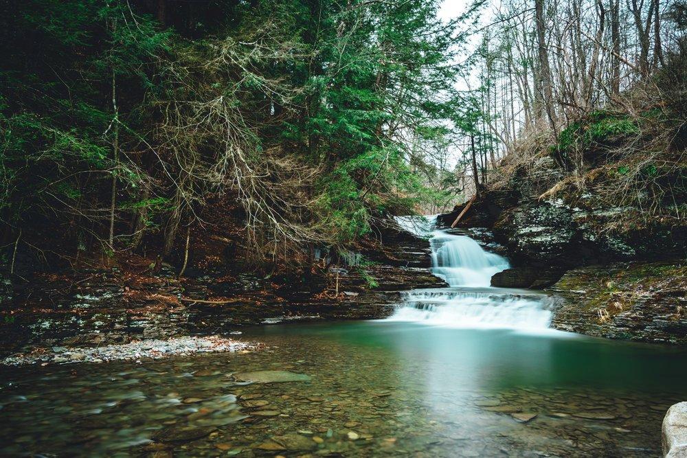 Robert H Treman State park -
