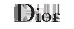 CalligraphyEnVogue_Press-Dior.jpg