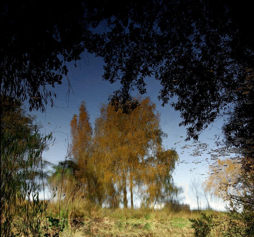 Mirror Landscape 5