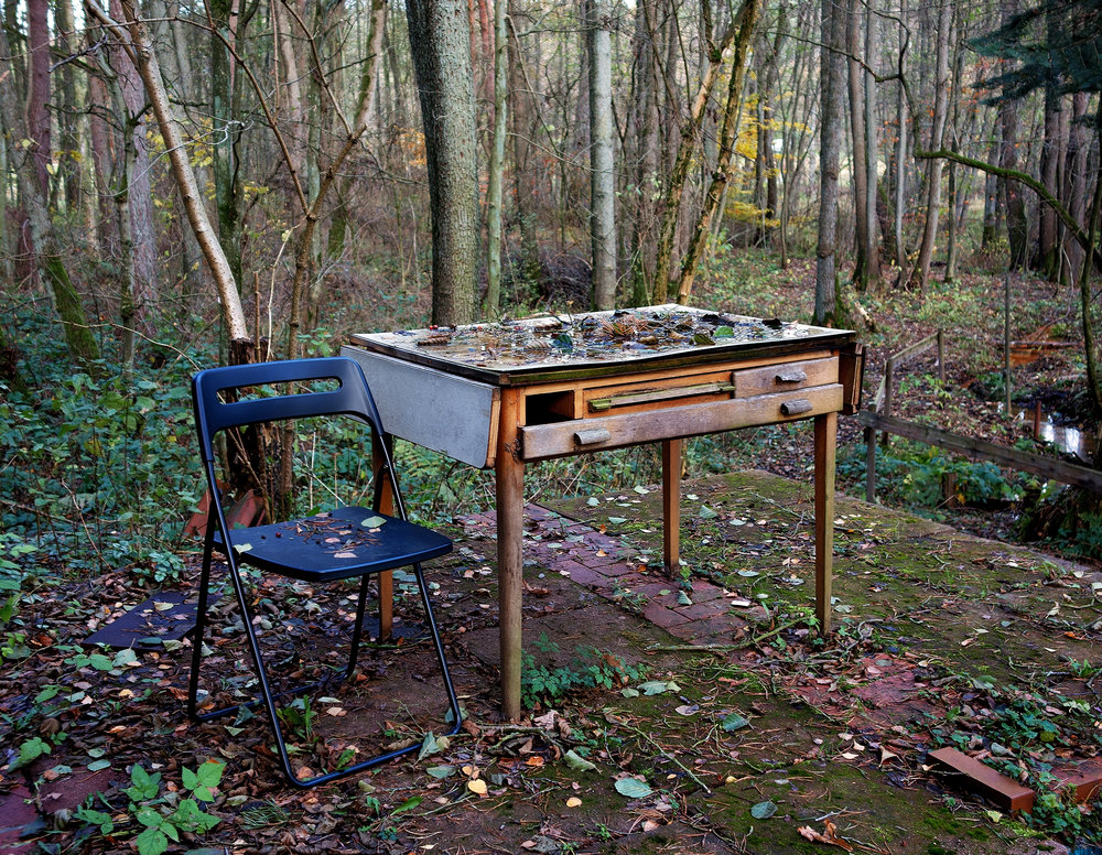 NATURE'S WRITING DESK