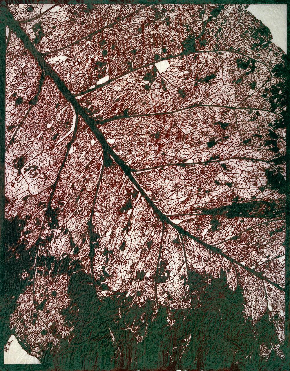 RUSTING LEAF, 2002