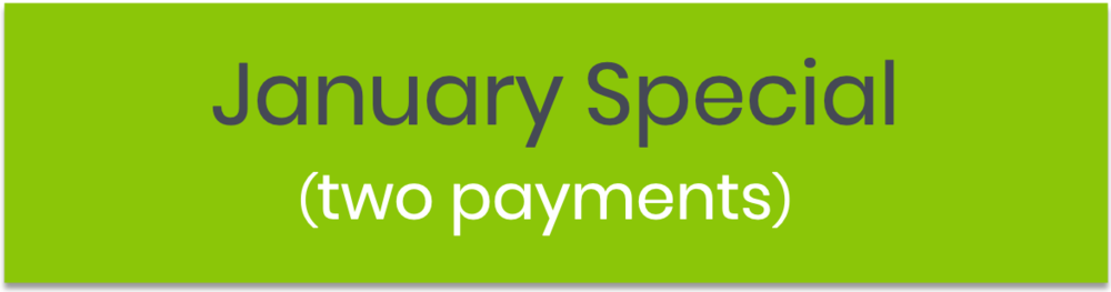 2 X $165 - Access to all the course features, except Bonus.First payment upfrontSecond payment in Week 2 of the Program